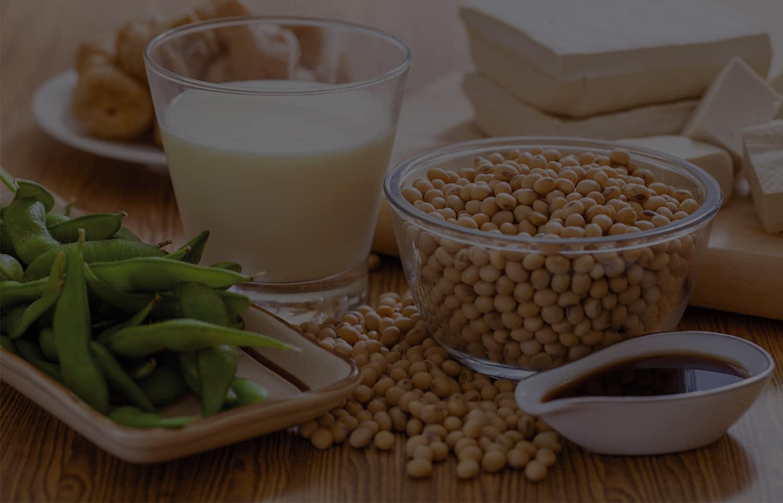 usine soja afrique