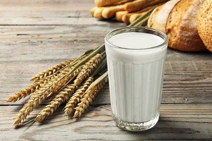 Usine de produits laitiers en Afrique : lait pasteurisé