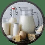 Réalisation d'usine agroalimentaire en Afrique : produits laitiers