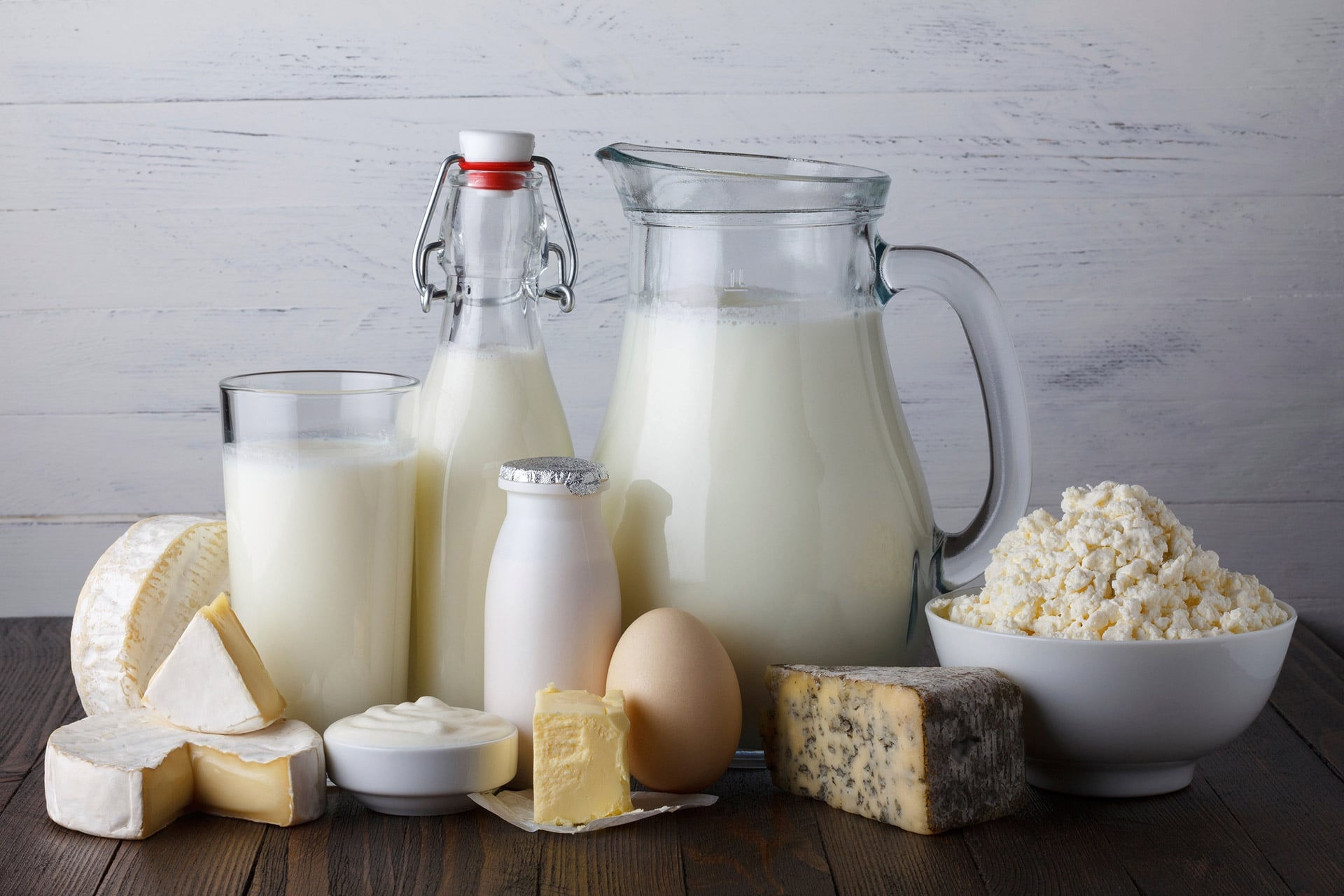 Africa dairy products factory design