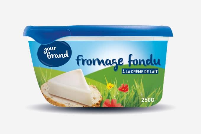 étude sur la fromage fondu procédé de fabrication