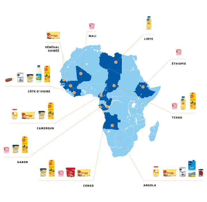 réalisation usines afrique